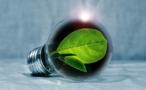 energia verde 300