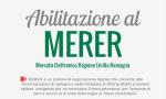 Infografica MERERx100