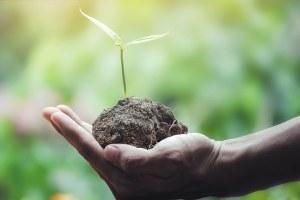 Sostenibilità ambientale: i benefici raggiunti grazie alle Convenzioni di Intercent-ER